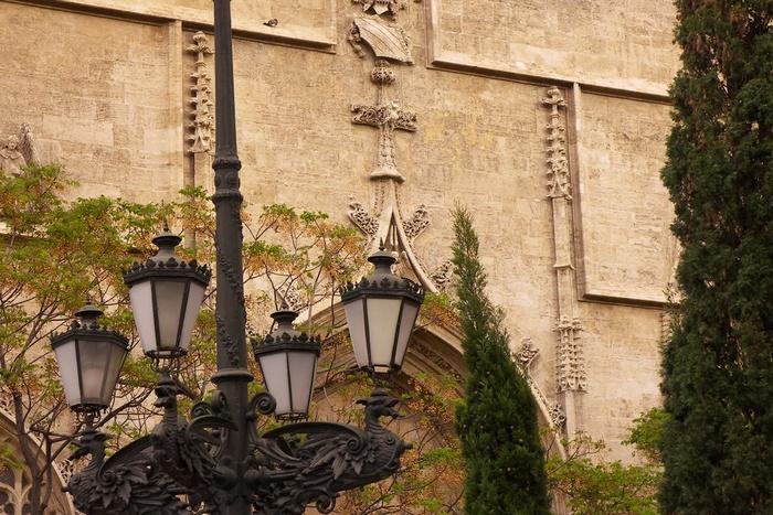 Wall, Tree and Lamp