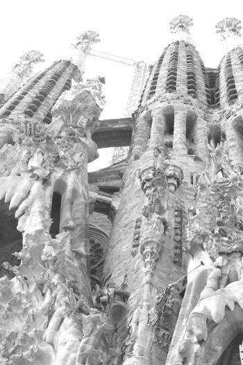 Barcelona White