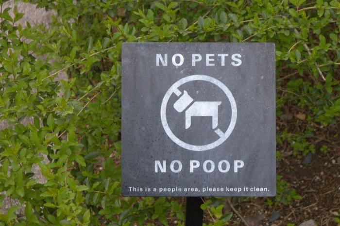 No Pets No Poop