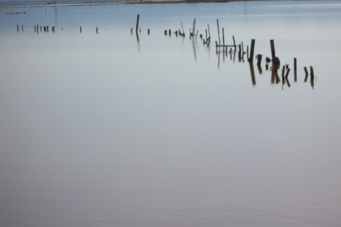 Water Poles