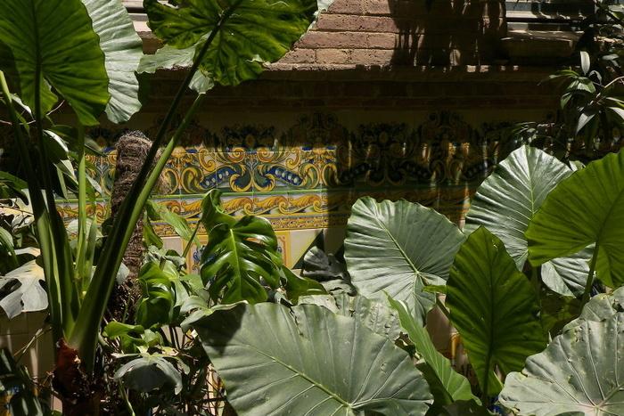 Sant Pau Plants