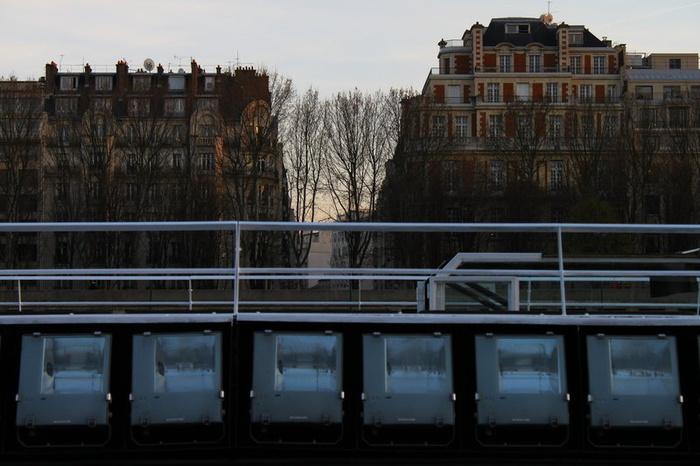 Seine Lights