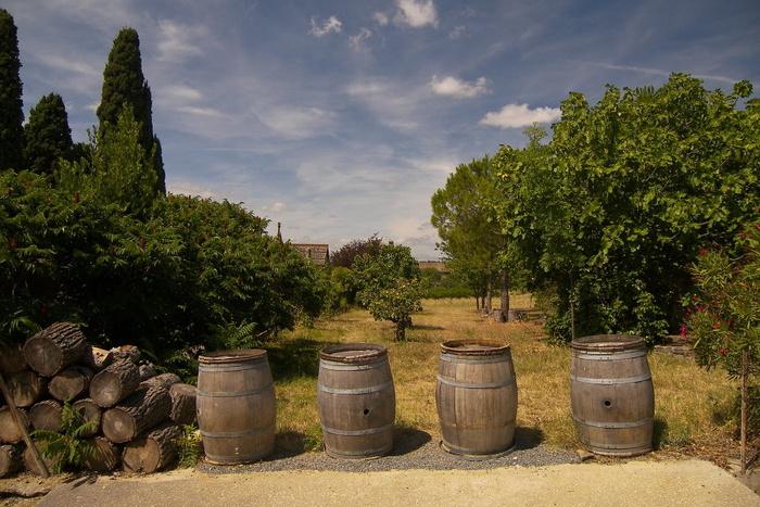 Four Barrels in a Field